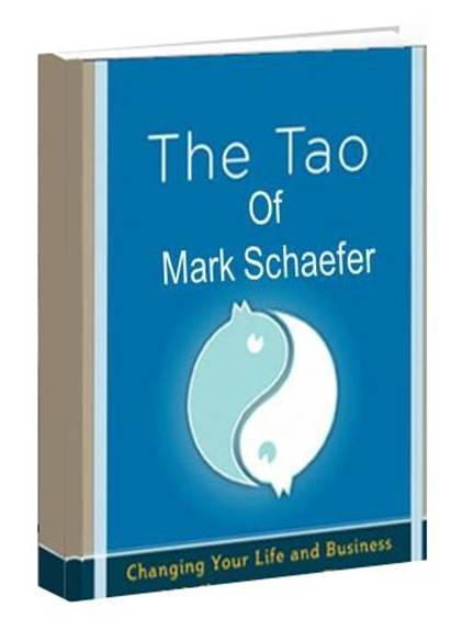 The Tao of Mark Schaefer